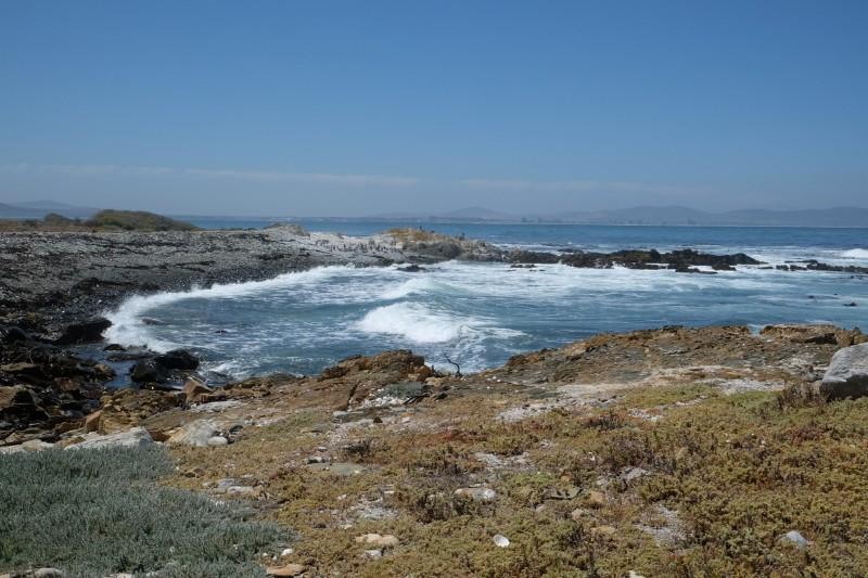 Suedafrika-Kapstadt-Robben-Island-Insel