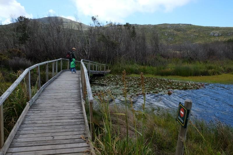 Suedafrika-Kapstadt-Silvermine-Nature-Reserve-Stausee-Wanderweg