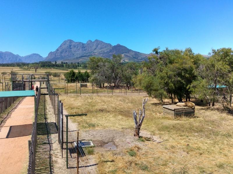 Suedafrika-Westkap-Drakenstein-Lion-Park-Gehege