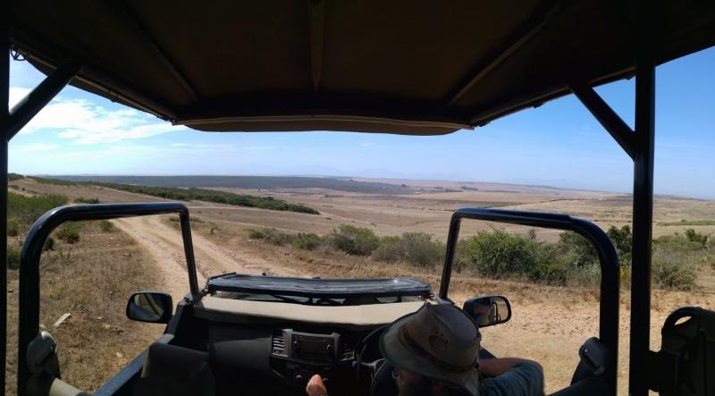 Suedafrika-Albertinia-Garden-Route-Game-Lodge-2