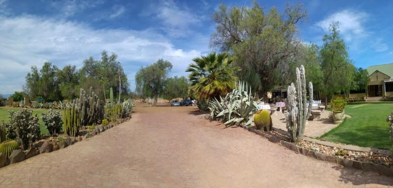 Suedafrika-Oudtshoorn-High-Gate-Straussenfarm-3
